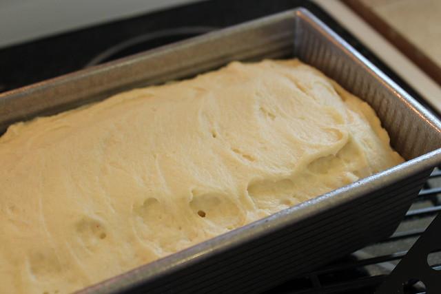 Gluten Free Bread Dough  Soft Gluten Free Sandwich Bread Recipe that s Easy to Make