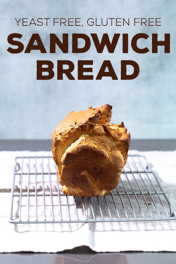 Gluten Free Bread No Yeast  Yeast Free Gluten Free Bread for Sandwiches