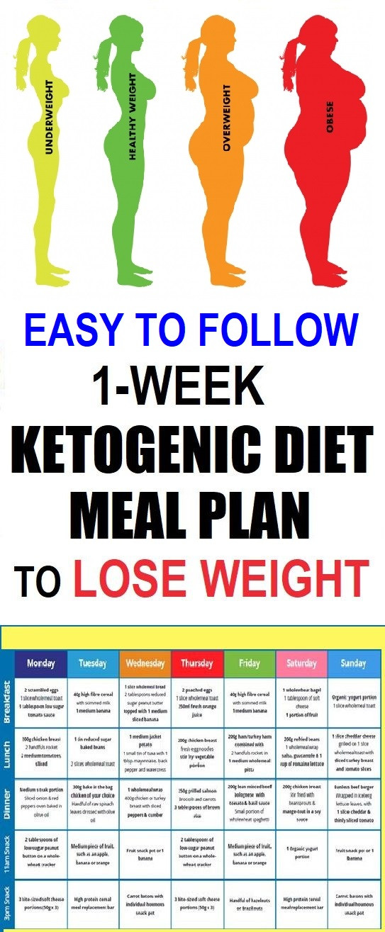 Keto Diet For Beginners Losing Weight  Easy To Follow e Week Ketogenic Diet Meal Plan To Lose