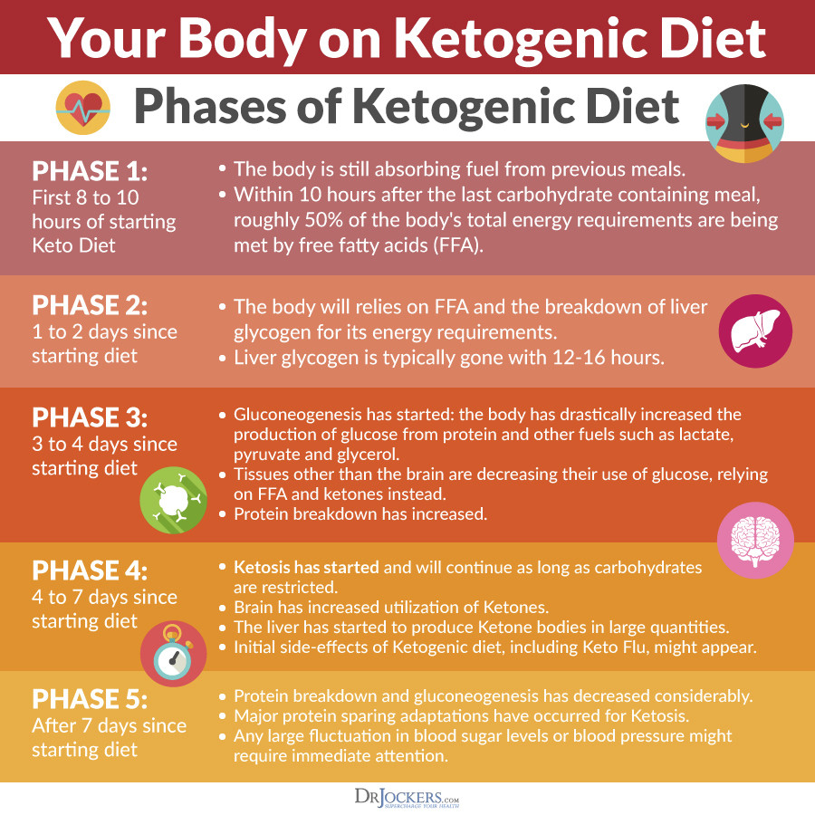 3 Day Ketosis Diet  The Keto Metabolic Makeover DrJockers