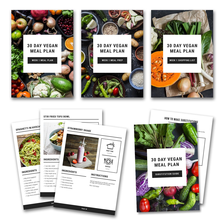 30 Day Vegan Plan  30 Day Vegan Meal Plan — 30 Day Vegan Meal Plan