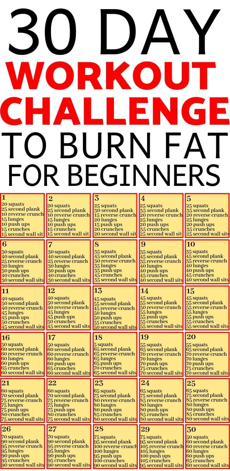 Beginner Fat Burning Workout  Pin on Body fitness