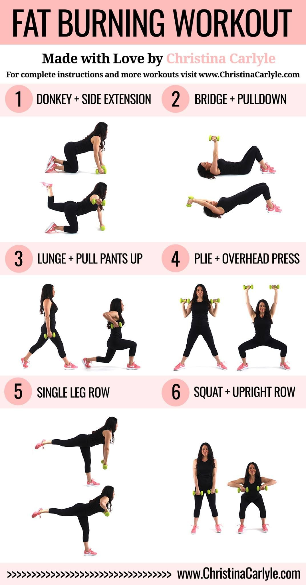 Beginner Fat Burning Workout  Pin on Home Workouts for Women