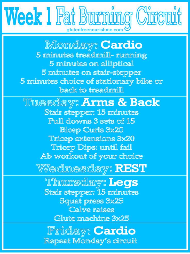 Beginner Fat Burning Workout  Beginners Fat Burning Workout Curcuit Week 1