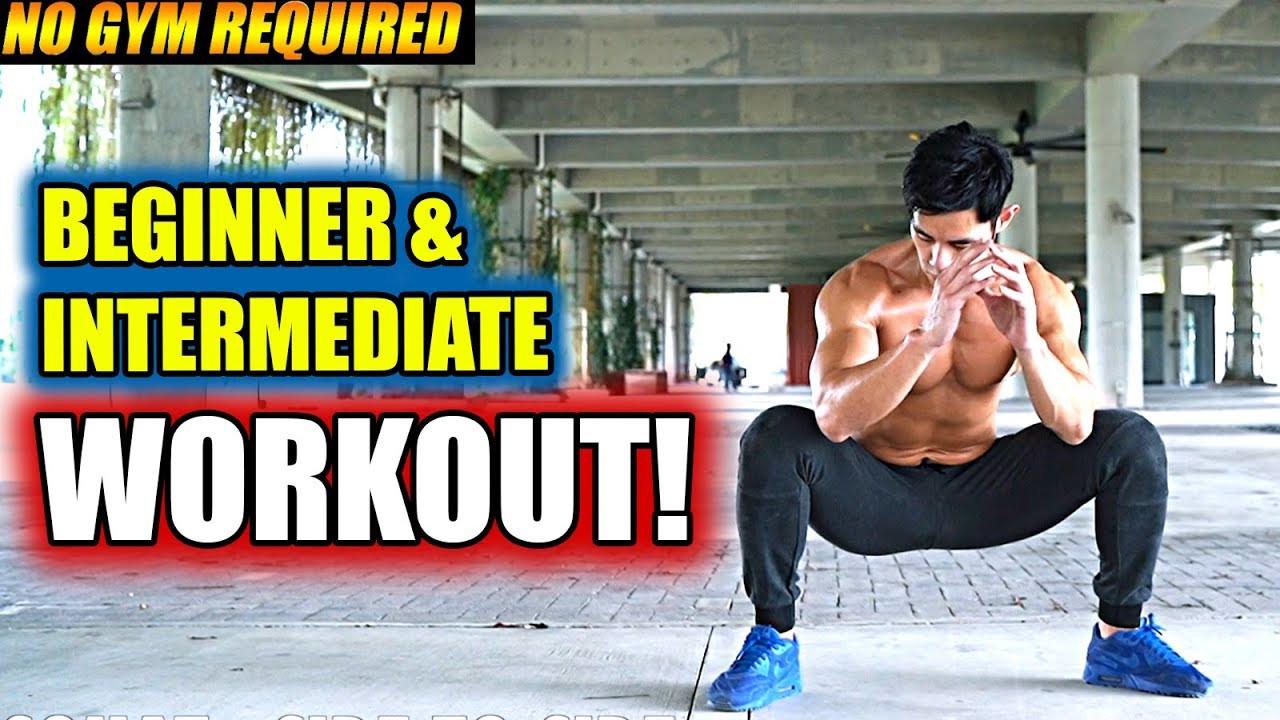 Beginner Fat Burning Workout  [Level 2 5] Fat Burning Workout Routine for Beginner