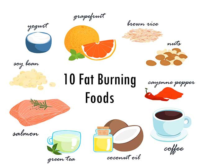 Best Fat Burning Foods  Best Fat Burning Foods to Burn Belly Fat for Men and Women
