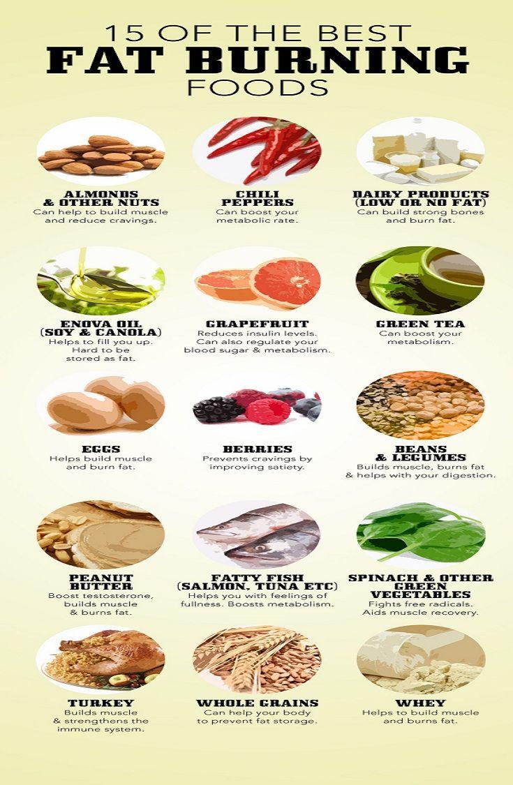 Best Fat Burning Foods  Fat Burning Foods Supplement Reviews Blog