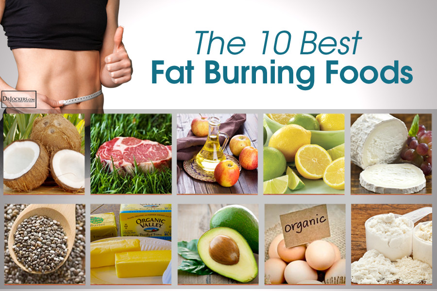 Best Fat Burning Foods  The 10 Best Fat Burning Foods