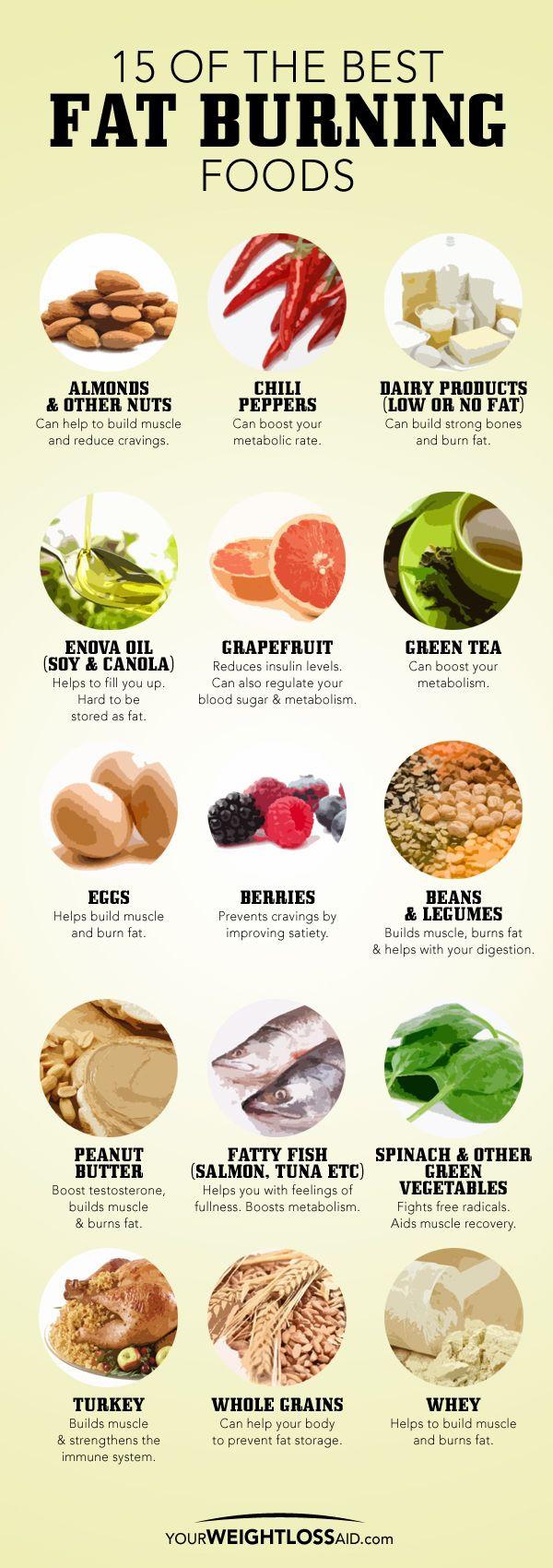 Best Fat Burning Foods  15 Fat Burning Foods Stuff