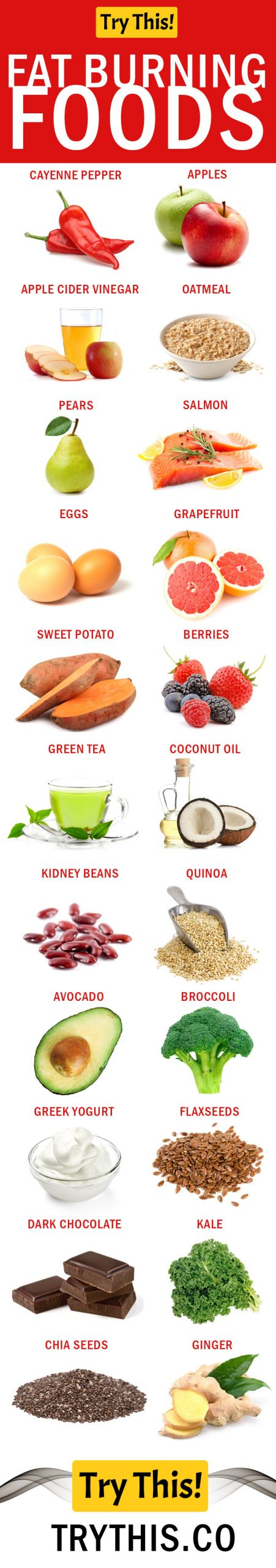 Best Fat Burning Foods  Fat Burning Foods – Best Foods To Eat For Weight Loss