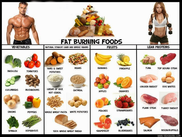 Fast Fat Burning Foods  Best Fat Burning Foods List