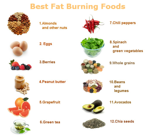 Fast Fat Burning Foods  Fat Burning Foods GOQii