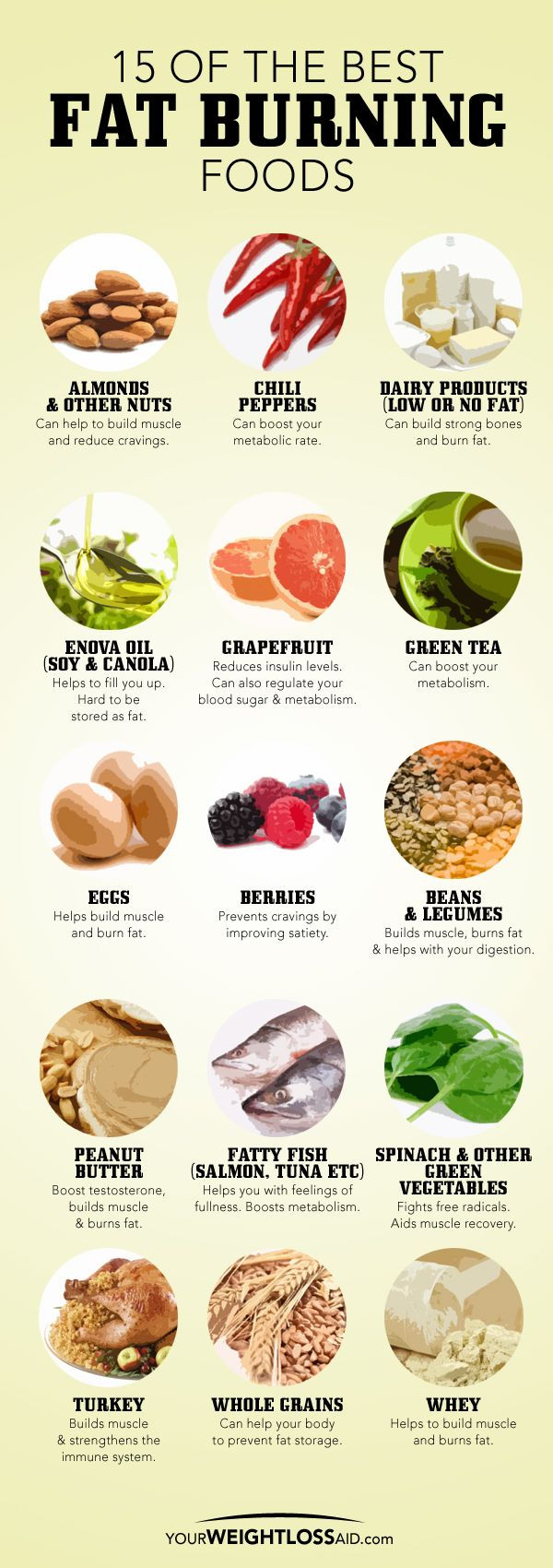Fat Burning Foods Belly Recipes  7 Steps to Weight Loss for Men Over 40 Age The General Post