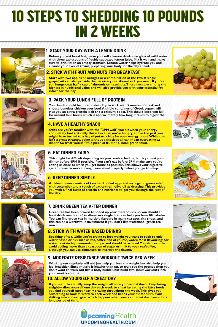Fat Burning Foods Losing Weight 10 Pounds  10 Steps to Shedding 10 Pounds in 2 weeks Instructions