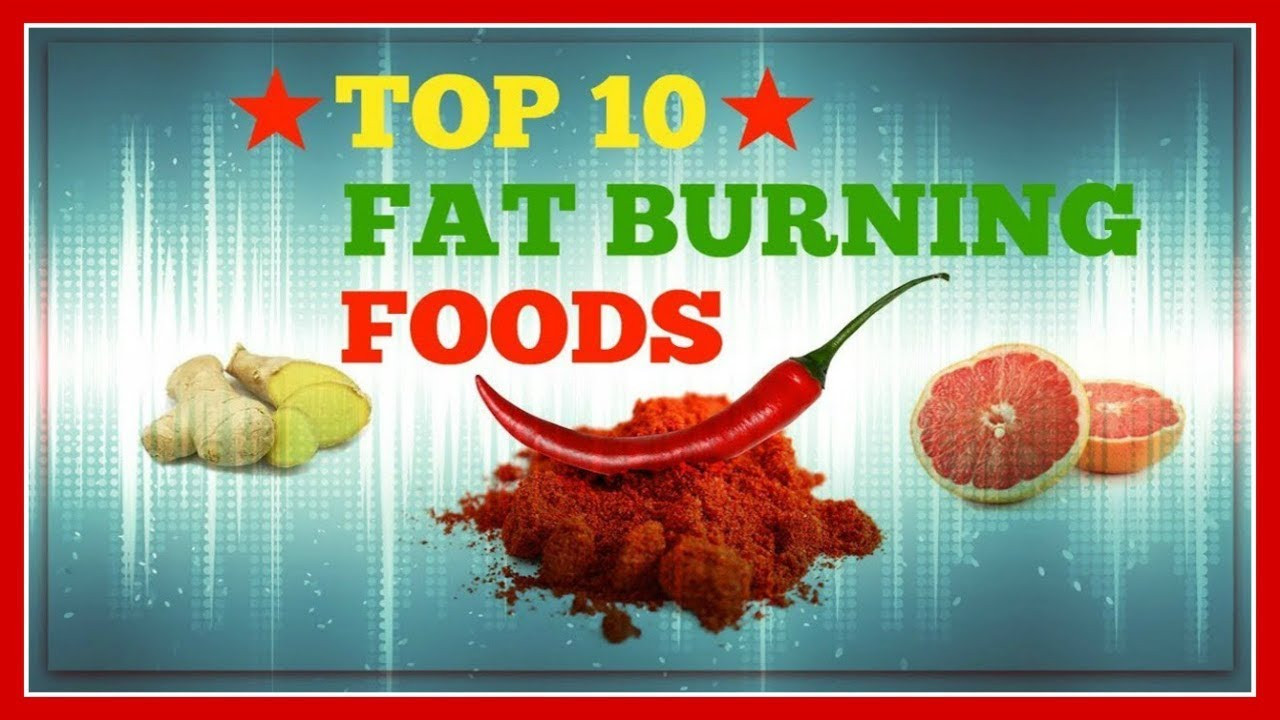 Fat Burning Foods Losing Weight 10 Pounds  Top 10 Fat Burning Foods For Weight Loss and Belly Fat