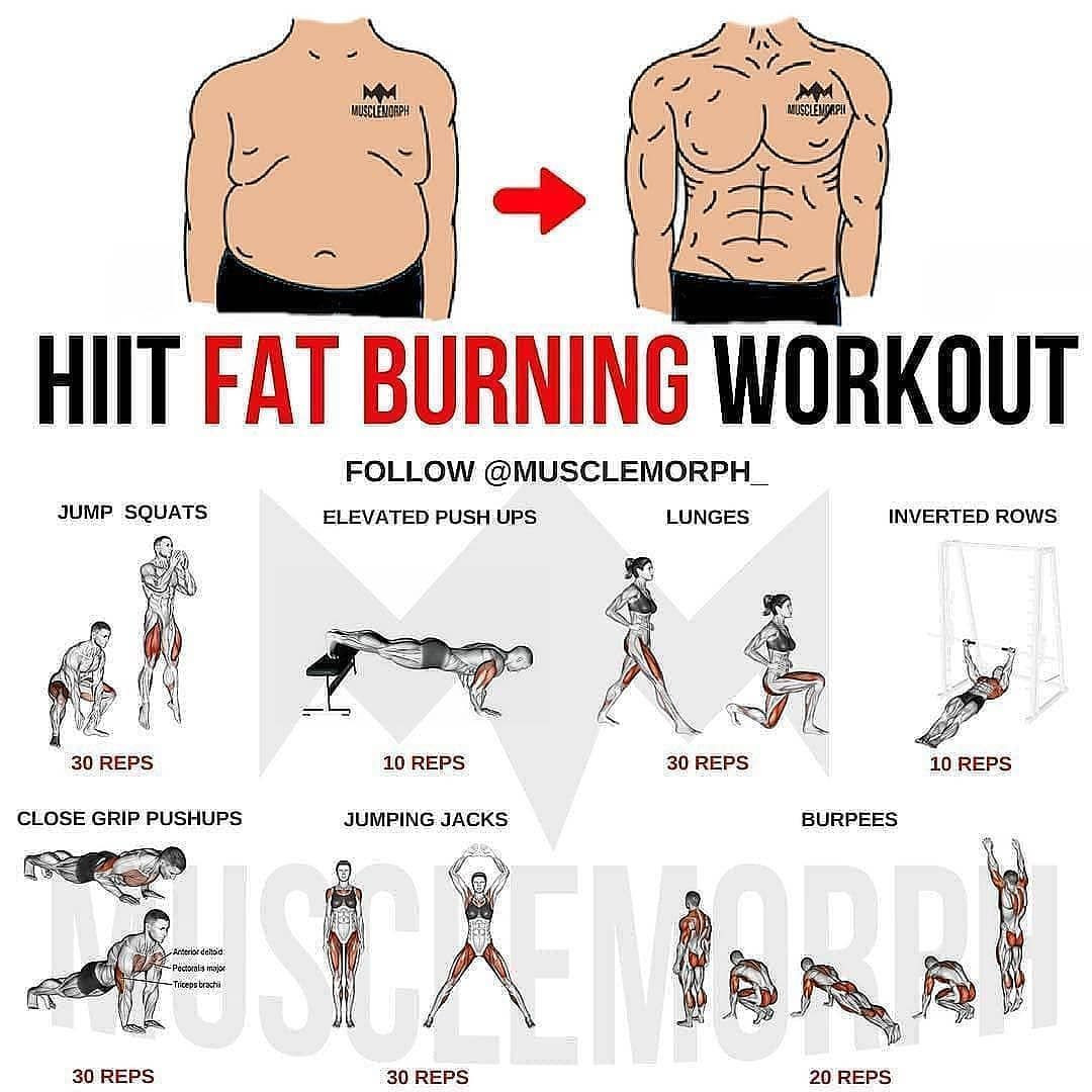 Fat Burning Workout For Men At Home  Pin on HIIT