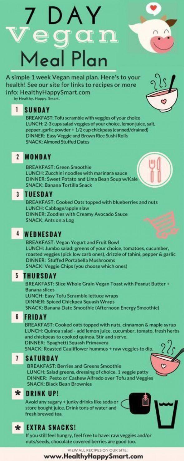 Going Vegan Plan  1 week Free Vegan Meal Plan PDF helpful healthy and