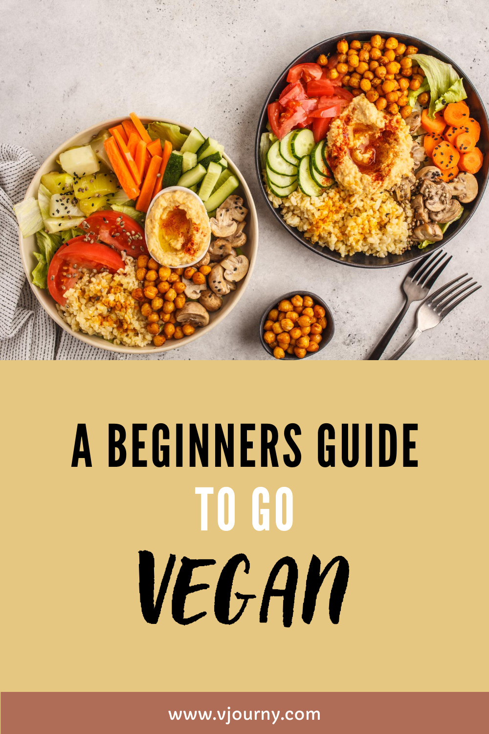 Going Vegan Plan  A Beginners Guide on How to Go Vegan easy steps in 2020