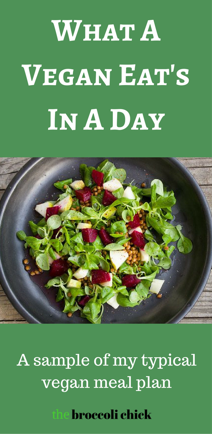 Going Vegan Plan  What a vegan eats in a day A sample of my daily meal plan