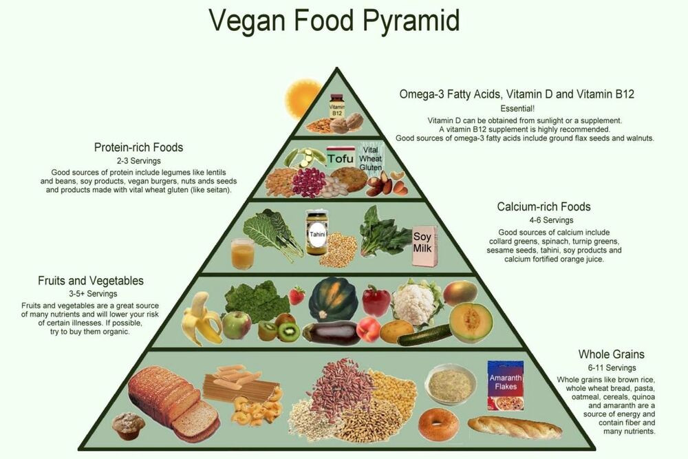 Healthy Vegan Plan  Vegan Food Pyramid Healthy Eating Meal and Diet Plan 13 x