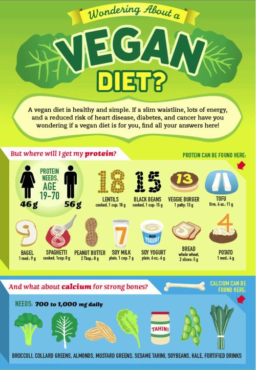 Healthy Vegan Plan  Vegan Diet
