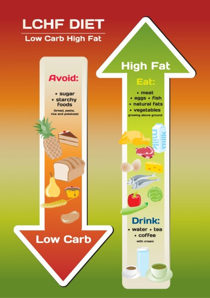 High Protein Low Carb Low Fat Diet  What s with the low fat high carb t for athletes
