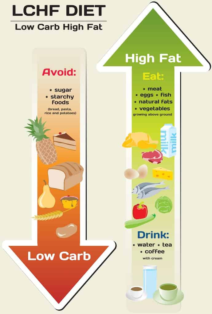 High Protein Low Carb Low Fat Diet  PCOS Diet How To Lose Weight and Treat Symptoms Naturally