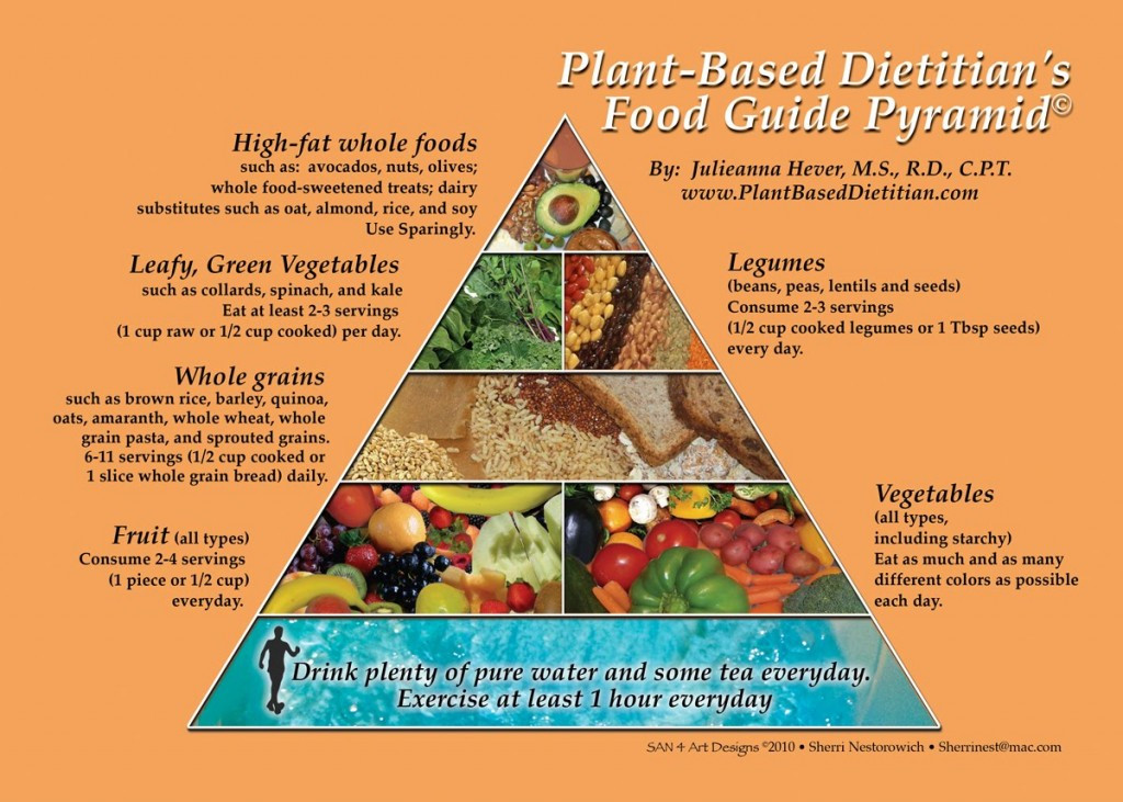 How To Eat Plant Based Diet  Is it possible to be a vegan runner SandyFeet Events