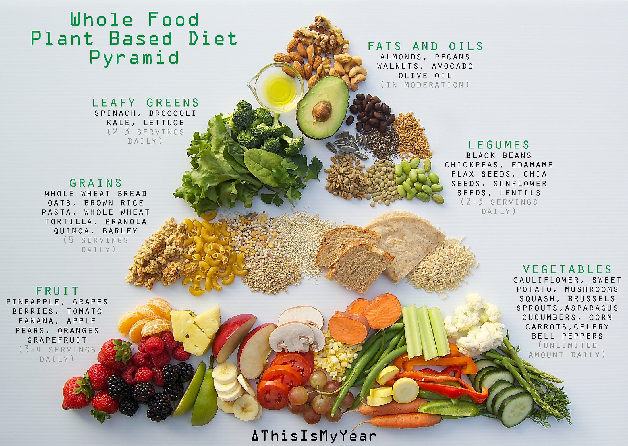 How To Eat Plant Based Diet  this is my year gear Plant Based Diet 101