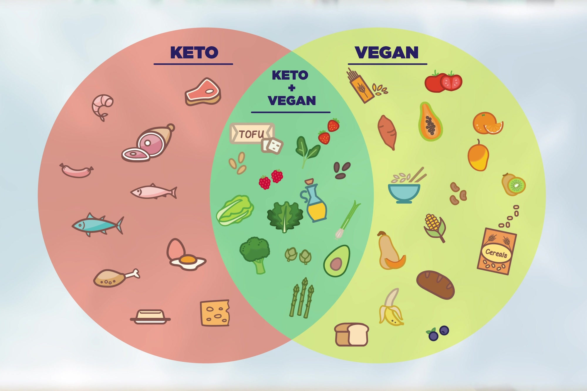 Keto Diet Vegan Plan  Keto vs Vegan Foods