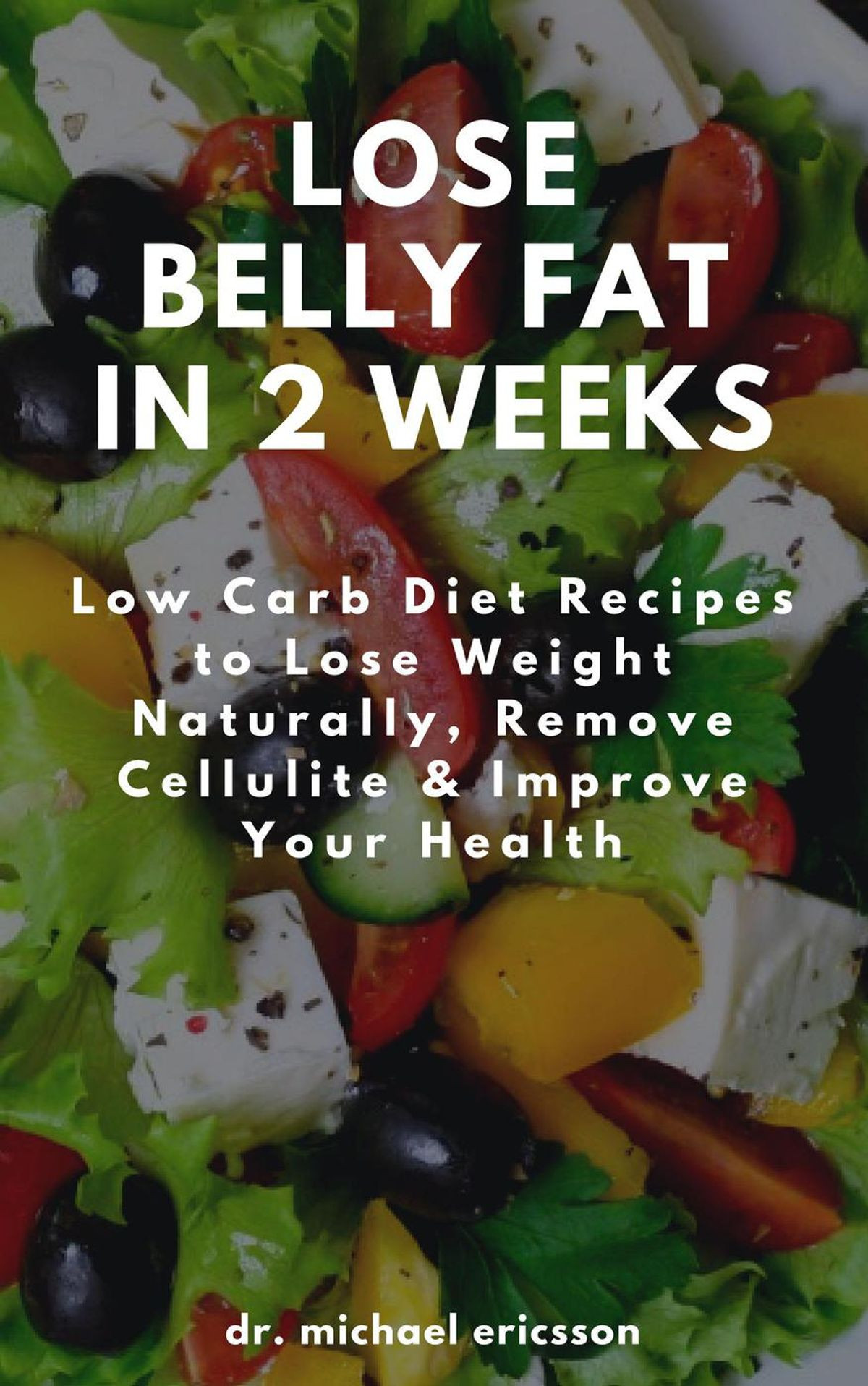 Low Carb Diet Recipes Losing Weight  Lose Belly Fat in 2 Weeks Low Carb Diet Recipes to Lose