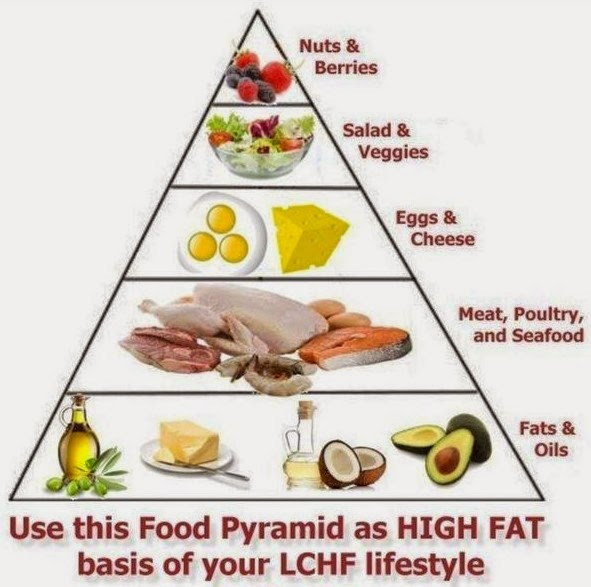 Low Fat Diet For Diabetics  The Low Carb Diabetic The low carb high fat food pyramid