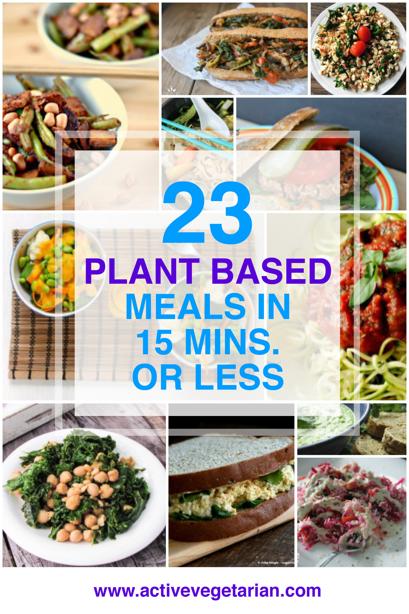 Plant Based Diet Meal Plan Recipes  23 Plant Based Meals in 15 Minutes or Less