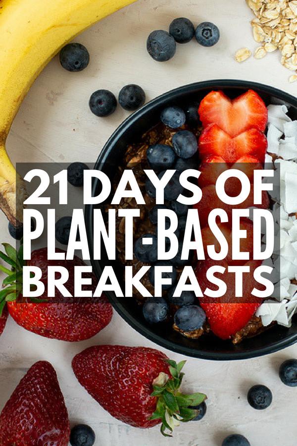 Plant Based Recipes For Beginners Kids  Plant Based Diet Meal Plan for Beginners 21 Day Kickstart