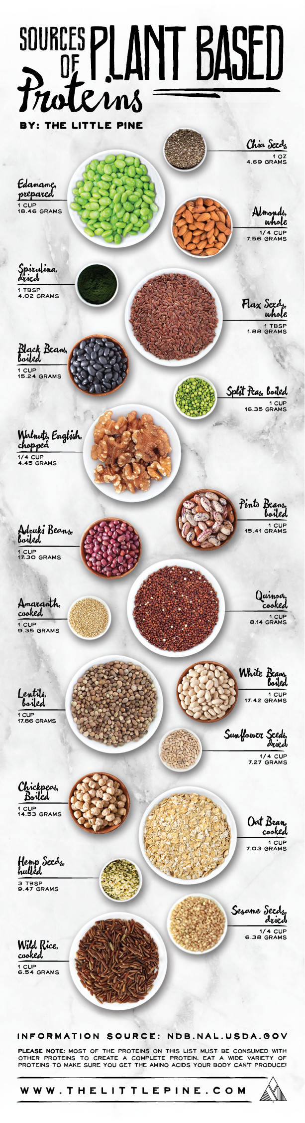 Plant Based Recipes Protein  Plant Based Protein Sources The Little Pine