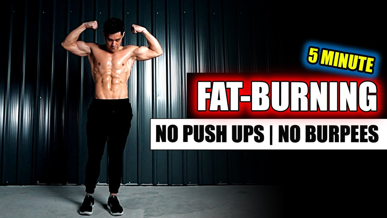 Standing Fat Burning Workout  [Level 3] All Standing Fat burning Workout No Push Ups