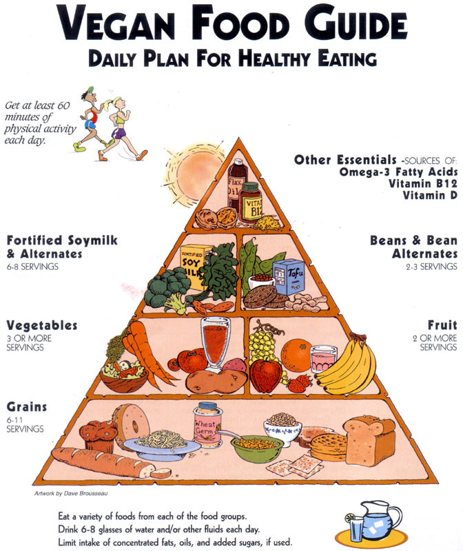 Strict Vegan Diet Plan  Fanatic Cook Are Strict Vegan Diets Healthy