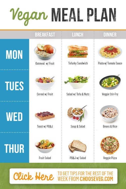 Vegan Diet Plan  vegan meal plans