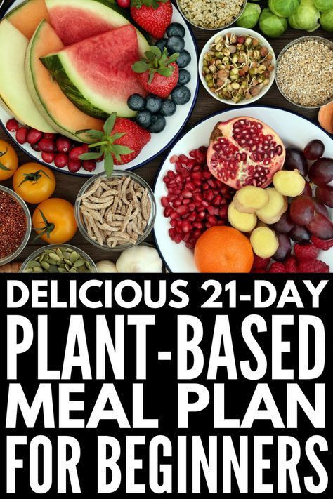 Vegan Diet Plan For Beginners  Plant Based Diet Meal Plan for Beginners 21 Day Kickstart