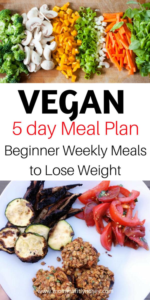 Vegan Diet Plan For Beginners  Plant Based Diet on a Bud for Beginners Eats