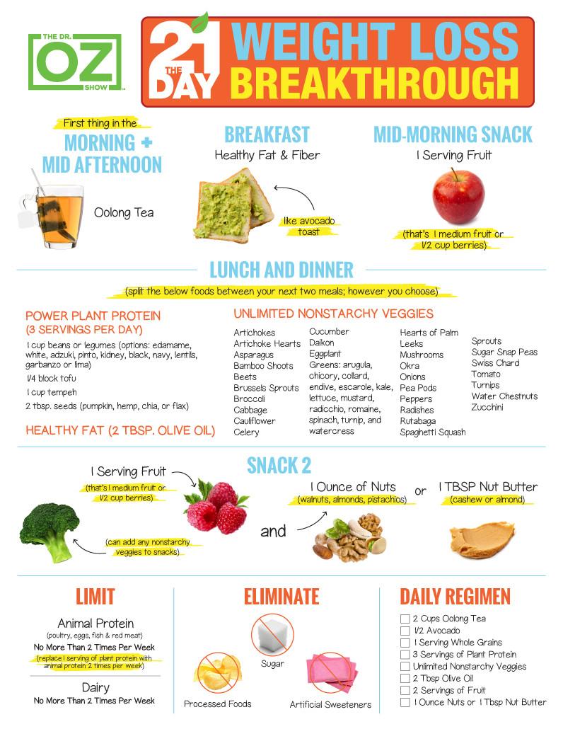 Vegan Diet Plan Weightloss 21 Days  The 21 Day Weight Loss Breakthrough Diet Print the Plan