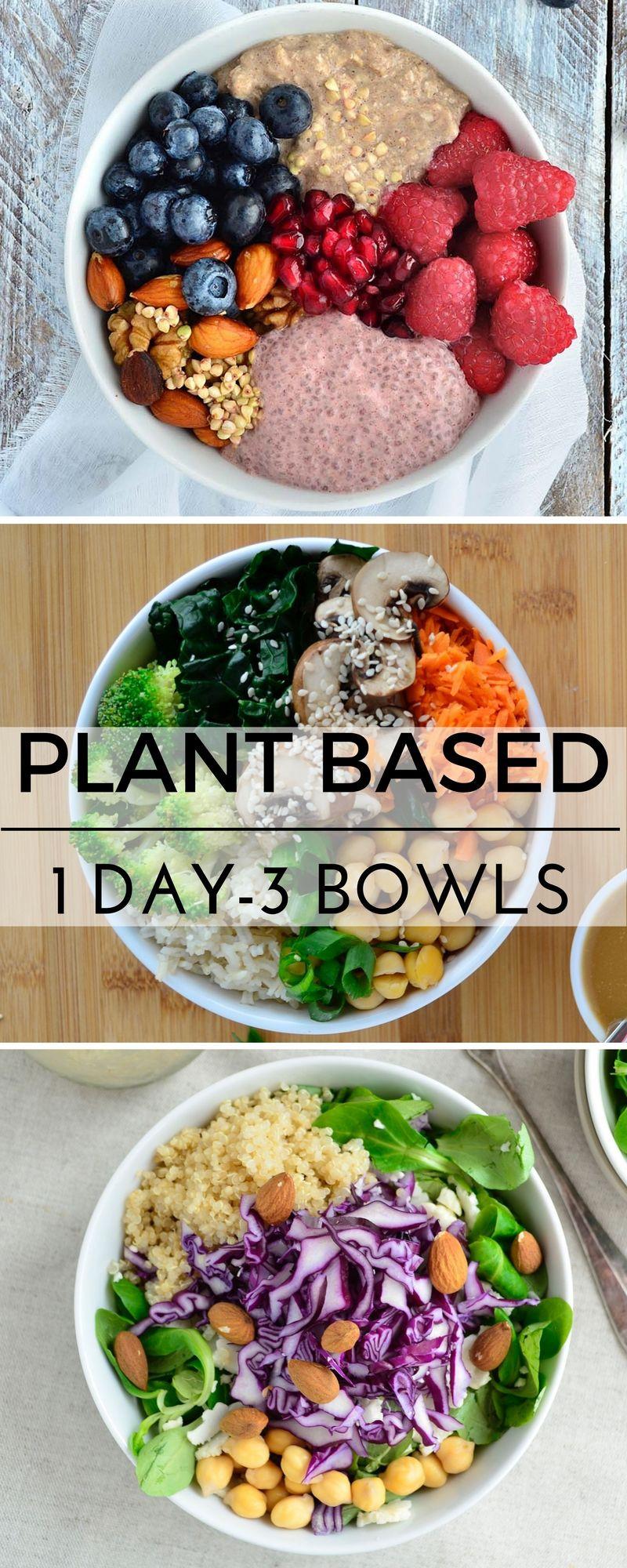 Vegan Plant Based Recipes  Plant based recipes vegan recipes healthy gluten free