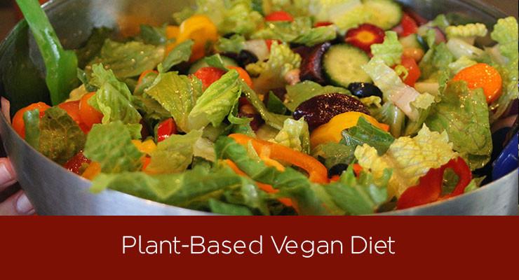 Vegan Plant Based Recipes  Tia Blanco Vegan Diet What I Eat in a Day