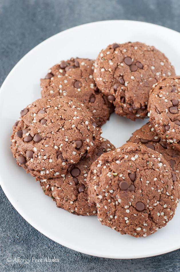 Vegan Protein Cookies  Paleo Vegan Double Chocolate Protein Cookies Allergy