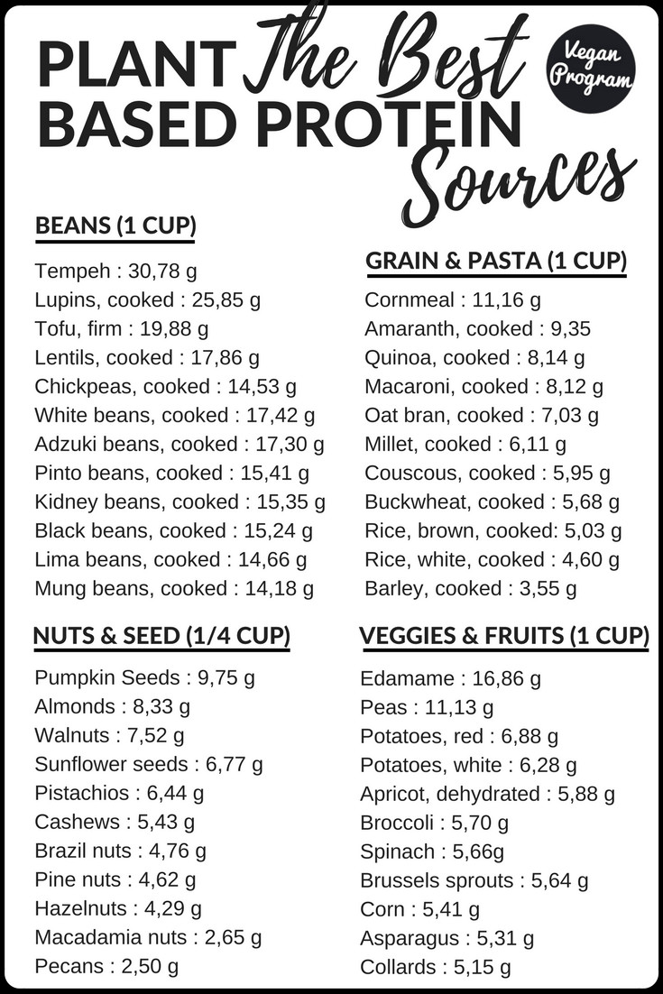 Vegan Protein List  A Vegan Guide to Plant based Proteins Vegan Program