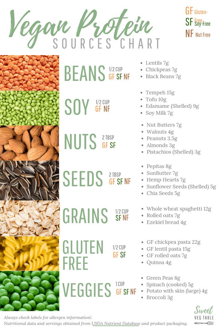 Vegan Protein List  Free Printable 7 Types of Vegan Protein Sources Chart
