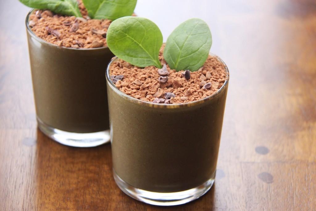 Vegan Protein Smoothie Recipes  Eat Dirt Chocolate Vegan Protein Shakes Recipe