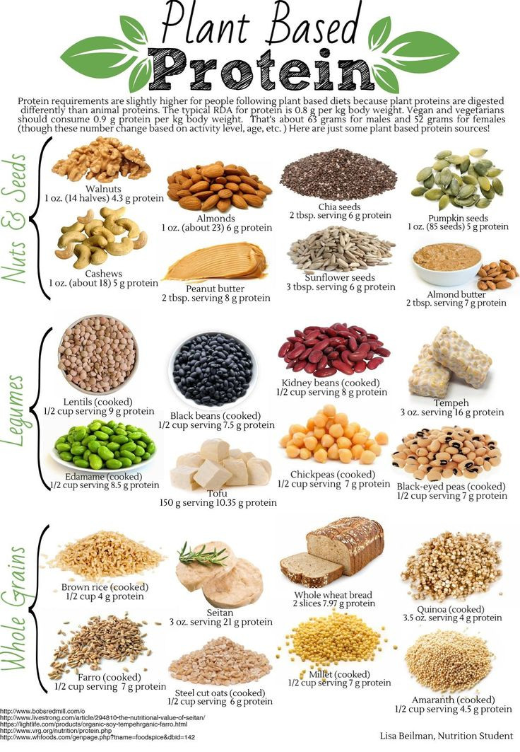 Vegan Protein Sources Plant Based  Want to learn more about plant proteins Join us at the