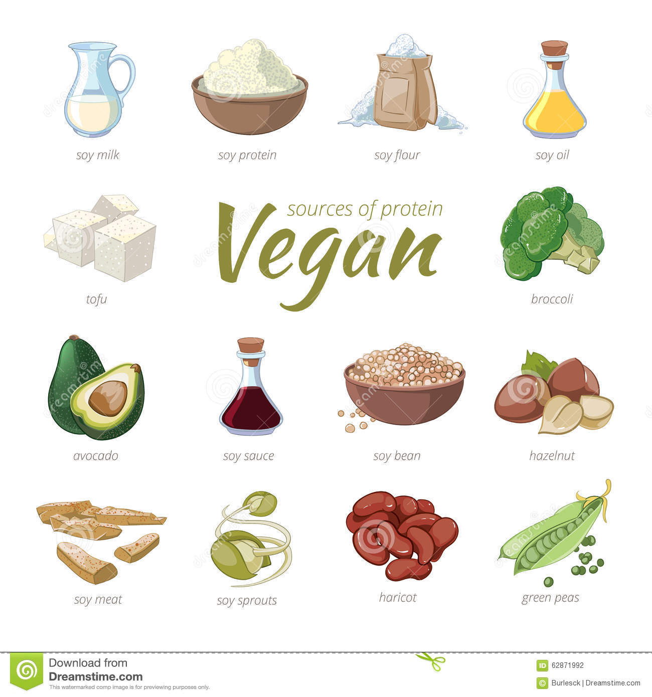 Vegan Protein Sources Plant Based  Vegan Sources Protein Plant Based Protein Stock Vector