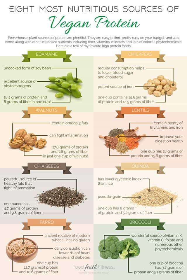 Vegan Protein Sources Plant Based  How to Get Protein As A Vegan Best Plant Protein Sources